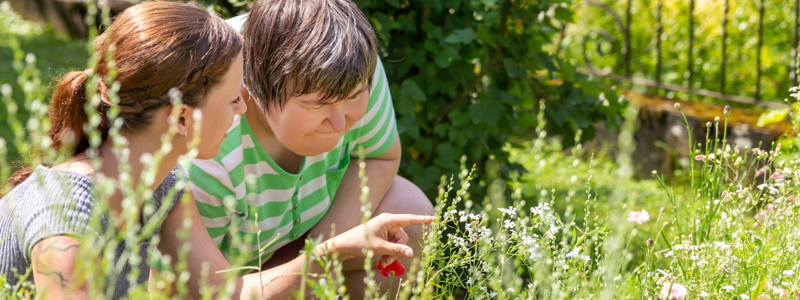 Looking at flowers in the garden